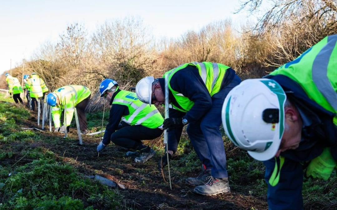 Trees planted to offset leisure centre build carbon footprint
